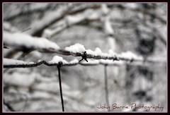 Harsh winter (John Barrie Photography) Tags: ice bokeh snowstorm barbwire picnik cincy winterblast masonohio beautifulexpressions icestormphoto johnbarrie mothernatureart johnbarriephotography cincinnatiicestorm09 frozenbarbwire wintersfinest 2009icestorm velocityphotography cincinnatiicestorm