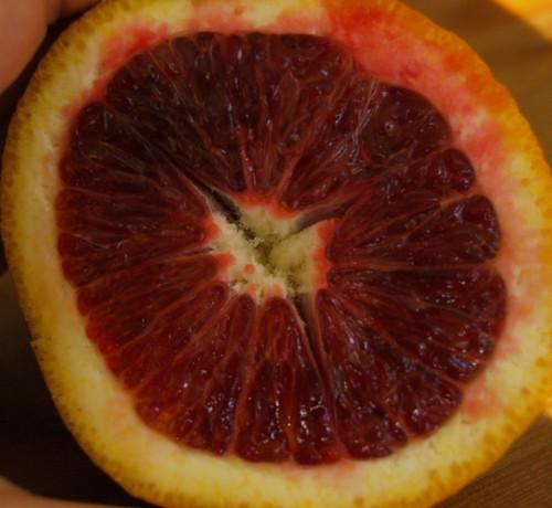 Blood Orange Inside