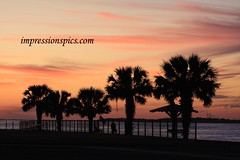 Port Aransas Sunset
