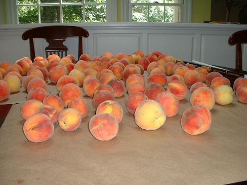 DSCF0042-Peaches-On-Table