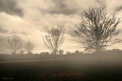 I  I   I    I (Heilah Alnasser) Tags: uk winter mist london sepia nikon ps nikkor 2009 hdr d300 heilah heilahn