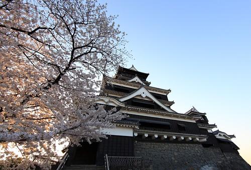 Kumamoto-jo(Castle) / 熊本城(くまもとじょう)