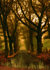 ~~ a place to reflect ~~ (xandram) Tags: road trees light cemetery photoshop reflections swamp distillery theunforgettablepictures proudshopper goldstaraward altrafotographia miasbest —obramaestra—