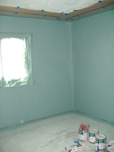 1/2 tint primer in master bedroom