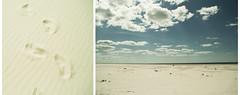 Amrum beachwalk (plaggenplei) Tags: sea beach strand see sand north nordsee meri nord saari amrum pohjoinen