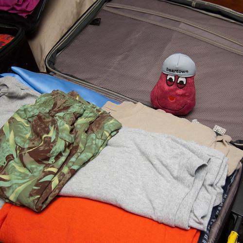 Beantown Bean packs his bag