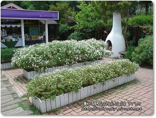新竹薰衣草森林(尖石)-012