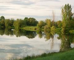pond trees (Eli Nixon) Tags: trees summer reflection water sunrise colorado hygiene morningwalk elinixon pellacrossing marlatttrails
