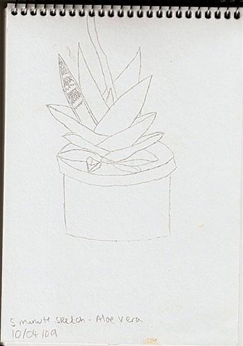 Aloe Vera Sketch (Large)