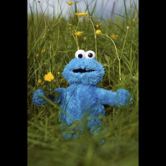 ...C is for Cookie Monster...
