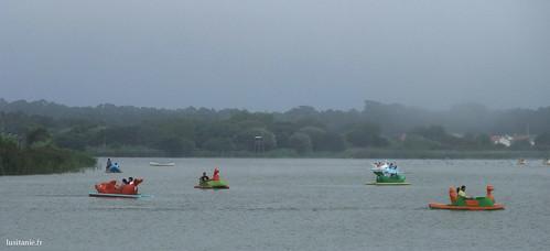 Acho que é preciso coragem para andar a fazer barco por esta neblina!