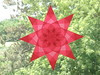 Red Star With Floral Center