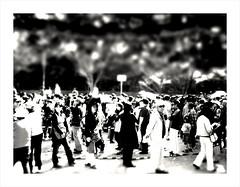 blackandwhite bw japan tokushima camerabag 2010 iphone... (Photo: daveweekes68 on Flickr)