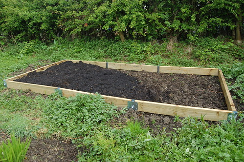raised bed May 10