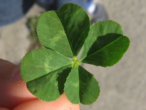 "memo that in order to be ""get lucky,"" it's gotta be a four-leaf clover. Related topics: Four Leaf Clover Tattoo"