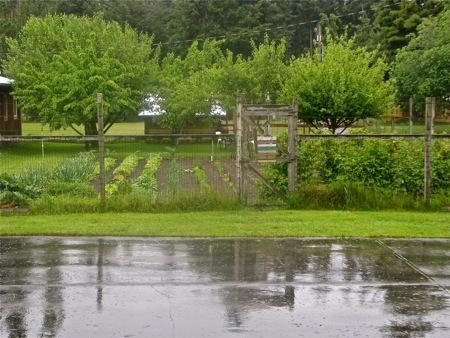 Farmer Bob's Garden on a rainy day in May