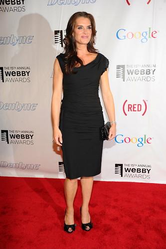 the webby awards 2011. The 15th Annual Webby Awards