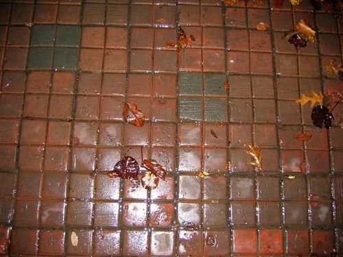 sidewalk Dec 2008 IMG_1148