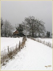 Farm at Worth (mag2003...) Tags: trees sky snow west farmhouse fence grey sussex cows farm worth crawley supershot