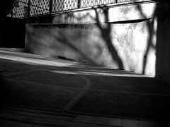 Dance of the shades (trelkovski) Tags: trees blackandwhite wall alberi blackwhite ramp shadows garage shades ombre slip biancoenero rampa scivolo estremità