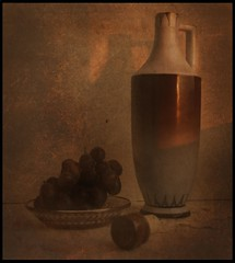 Wine and grapes (belle_vue_) Tags: book memories atqueartificia memoriesbook5