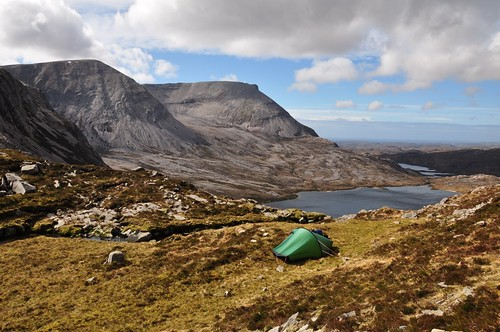 Arkle from camp