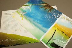 Tourism Brochure (inkdphotos) Tags: trip travel vacation plant tourism beach expedition water boat leaf sand graphic plan visit tourist illustrative explore journey palmtree tropical destination visitor brochure region handdrawn trifold travelagent