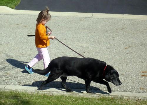 Alana Takes Elwyn for a Walk