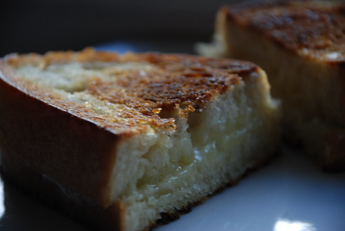 grilled cheese sandwich with cheddar