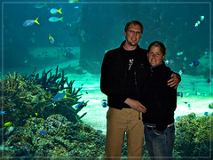 Aquarium (Trevor & Rachel) Tags: people fish water couple underwater sydney australia sydneyaquarium