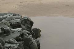 IMG_4345 (Graham Saltern) Tags: wales beaches stdavids