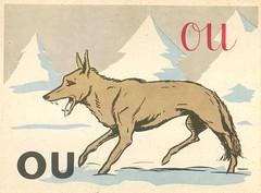ou loup