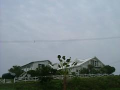 DSCF4196 (alfredcky) Tags:  amamioshima