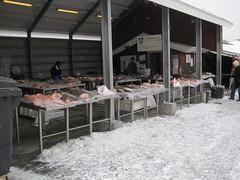 Brttet i Nuuk (lajlaFN) Tags: grnland