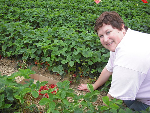 Hitting the Strawberry Patch!