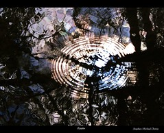Ripples (Steve Denny) Tags: kent stream sony ripples flowing bromley coppice a300