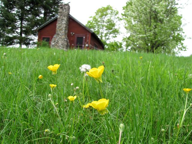 Cabin May 2011-20