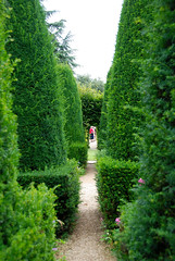 Leading you Down the Garden Path at Hidcote Manor Garden!