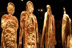 Bodies sliced man