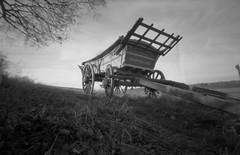 Hyde Hall Cart (luns_spluctrum) Tags: uk england blackandwhite bw white black hall blackwhite interestingness interesting pinhole hyde 6x9 cart essex ilford fp4 rhs 123bw