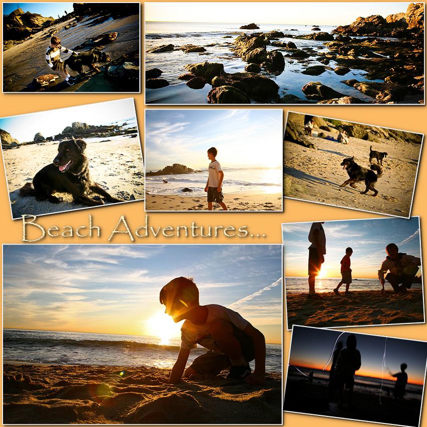 moss beach jan 09-000001