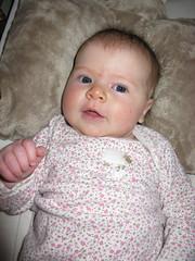 Amelia: Turtle Baby!