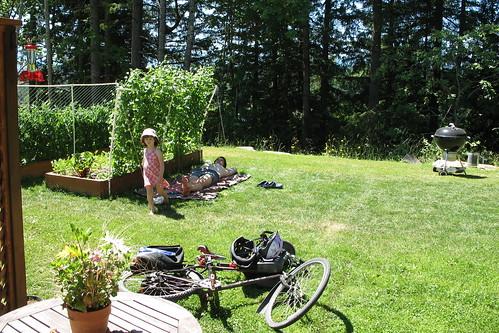 garden - june 2008