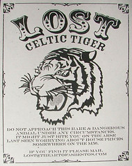 lost celtic tiger