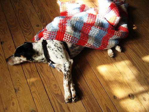 more blanket love