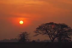7 minutes to sunset (sierra2u) Tags: sunset orange sun nature clouds dawn evening penang vr naturesfinest bej nikkor70300mmvr amateurshighfive sunsetsandsunrisesgold skycloudssunni