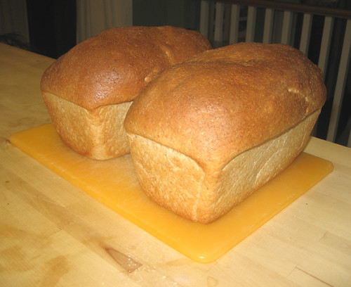 Fresh-baked bread