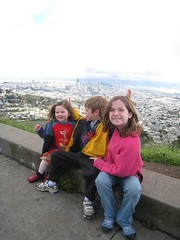 Three Monkeys Atop Twin Peaks