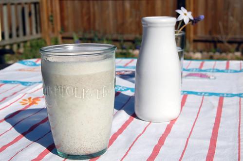 poppyseed milk