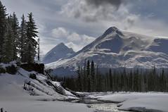 Snow River Alaska